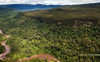 Penentuan Kebutuhan Hutan Tetap Lestari Untuk Mendukung Pencapaian SDG's