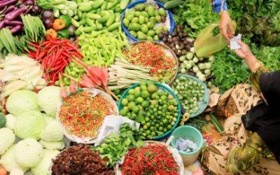 Penelitian Neraca Bahan Makanan (NBM)