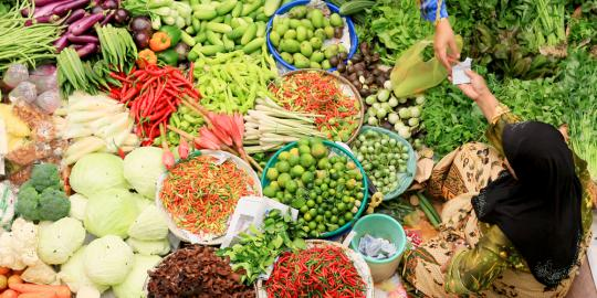 (Indonesia) Penelitian Neraca Bahan Makanan (NBM)