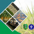 (Indonesia) Penyusunan Rancangan Pengembangan Pertanian Terpadu di Kecamatan Seluas dan Sungai Betung Kabupaten Bengkayang Provinsi Kalimantan Barat