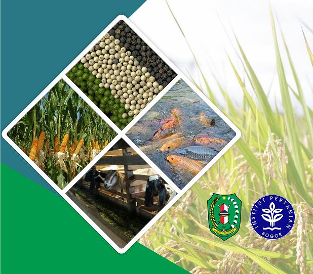 Penyusunan Rancangan Pengembangan Pertanian Terpadu Di Kecamatan Seluas Dan Sungai Betung Kabupaten Bengkayang Provinsi Kalimantan Barat P4w Lppm Ipb