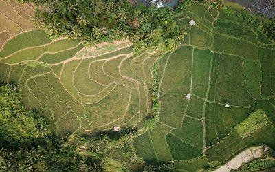 Membangun Negeri dari Lingkup Wilayah Perdesaan