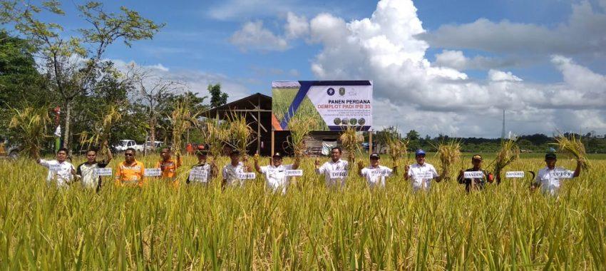 Kegiatan Pendampingan Pengembangan Agribisnis dan Agrodustri di Kabupaten Kutai Timur