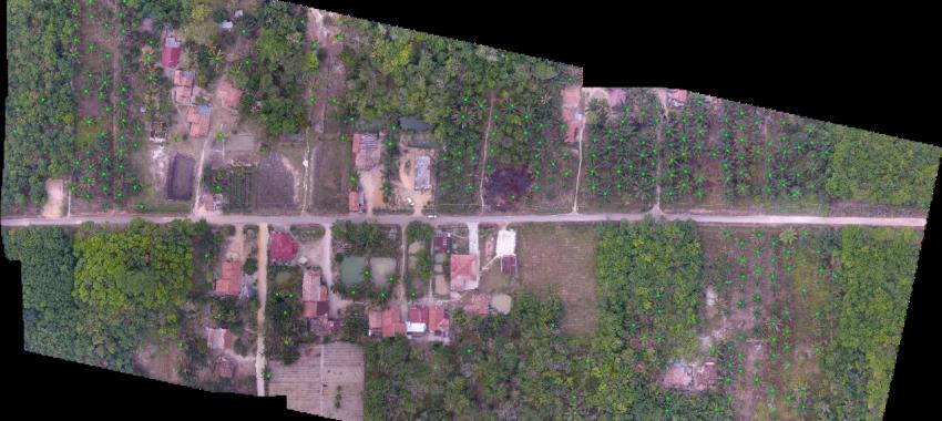 Pemanfaatan Teknologi Informasi Spasial Untuk Perencanaan Pengembangan dan Peremajaan Perkebunan Kelapa Sawit Selaras Tata Ruang dan Berkelanjutan