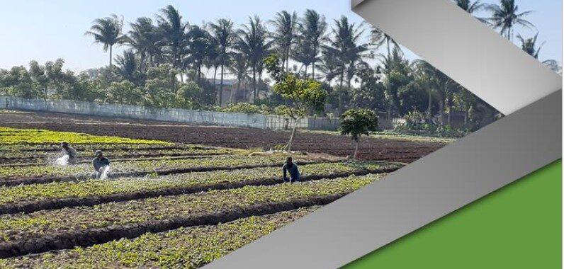 Pemetaan Kawasan Agropolitan Kabupaten Tangerang